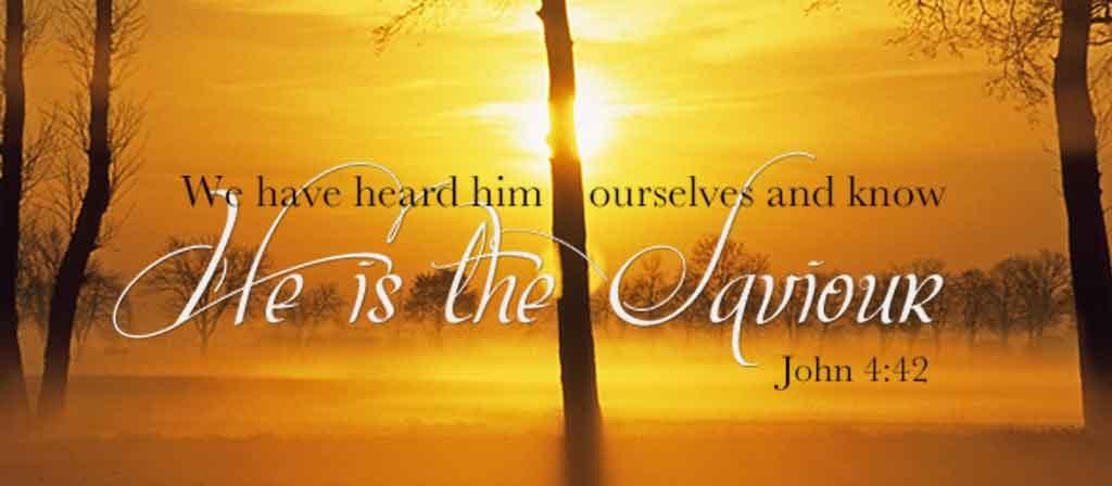 He is the Saviour